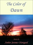 color-of-dawn-1-1
